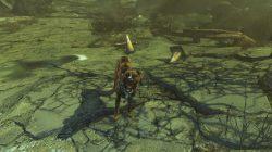 duke companion far harbor fallout 4