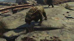 fallout 4 gracie companion far harbor