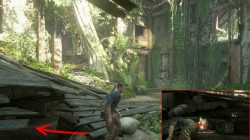 frechen bearded bottle uncharted 4