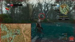 toussaint places of power witcher 3 blood and wine