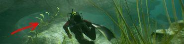 uncharted 4 chapter 3 chiriqui shark trinket