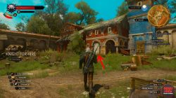 witcher 3 grandmaster cat feline armor location