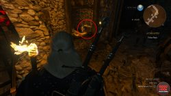 witcher 3 tesham mutna vampire armor baw