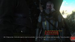 best silver sword witcher 3 blood and wine