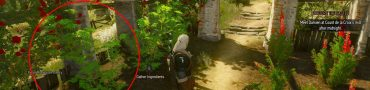 witcher 3 nazairi basil