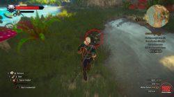 witcher 3 toussaint golden armor location