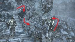 Corvian Settlement Ashes of Ariandel Dark Souls 3
