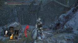 Corvian Settlement Ashes of Ariandel Dark Souls 3 DLC
