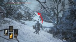 Follower Javelin Location DS 3 Ashes of Ariandel