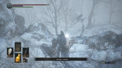 Follower Javelin Location DS 3 DLC Ashes of Ariandel
