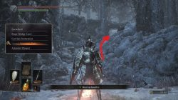 Follower Torch Location Ashes of Ariandel Dark Souls 3