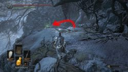 dark souls 3 ashes of ariandel follower curved sword