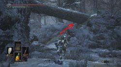 dark souls 3 ashes of ariandel follower shield