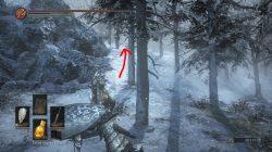 dark souls 3 dlc new sorcery frozen weapon