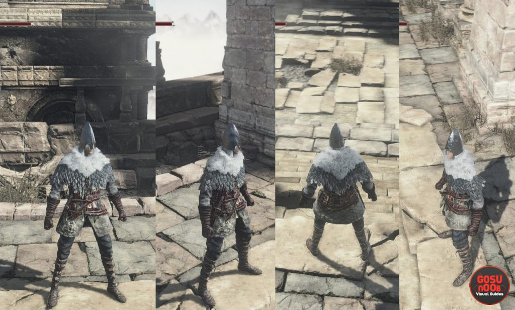 follower armor set ashes of ariandel