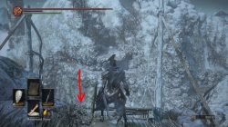 how to get to gravetender boss ashes of ariandel