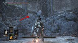 where to find follower shield dks3 aoa