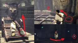 All Barrel Locations in The Last Guardian Game