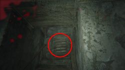 RE 7 How To Kill Marguerite Old House