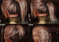 Hairstyles Customization Nioh