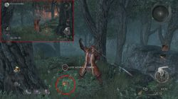 nioh tree spirit collectibles level 1