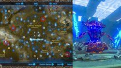 Ancient Battle Axe + Zelda Breath of the Wild