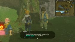 From the Ground Up side quest start location zelda