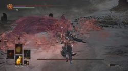 Ringed City Slave Knight Gael Boss Fight DS3