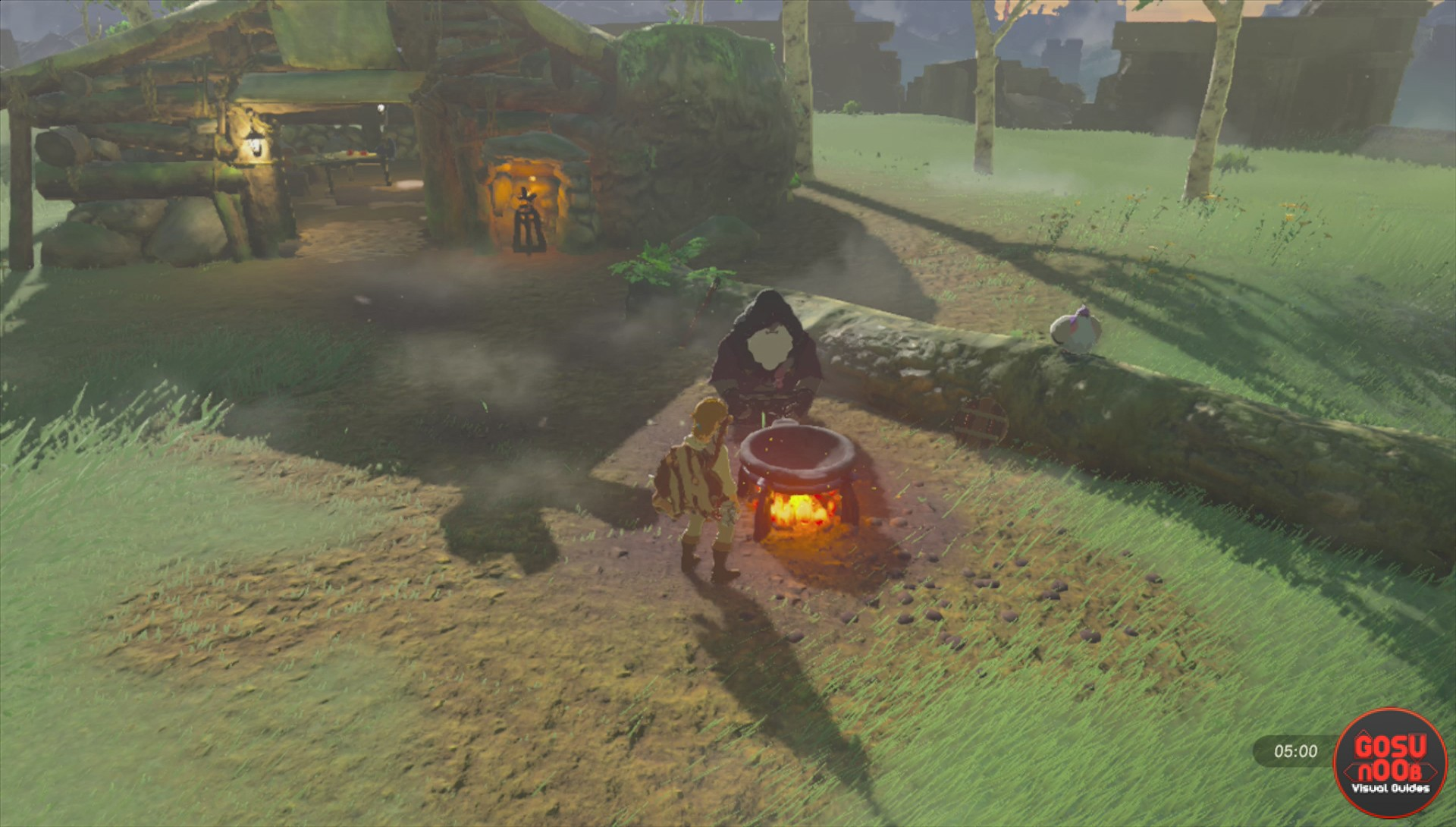 Zelda Botw Protection From Cold And Old Man S Warm Doublet Recipe