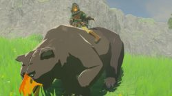 bear mount zelda