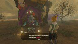 dark link armor merchant zelda botw