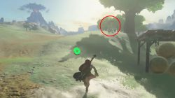 hestu second location zelda botw