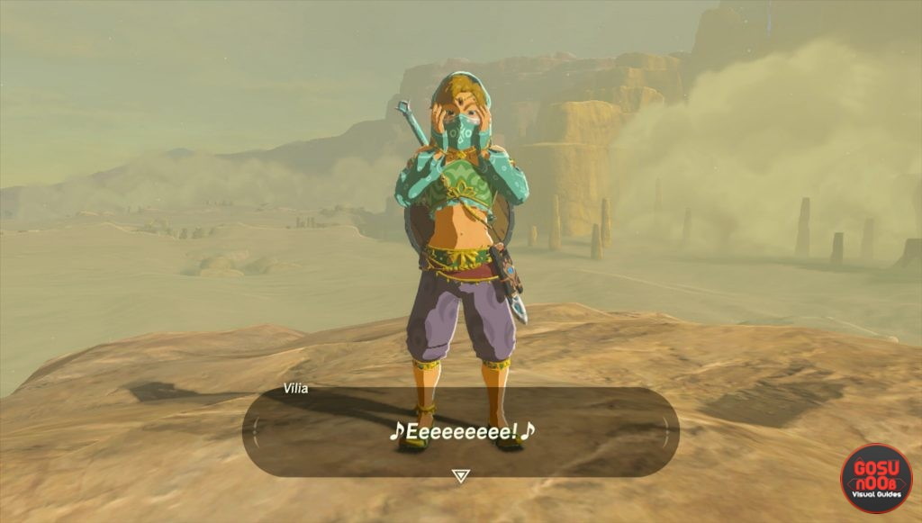 Zelda Breath Of The Wild How To Enter Gerudo Town