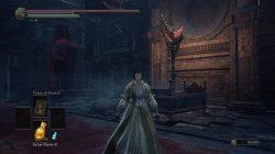 shira armor set ringed city