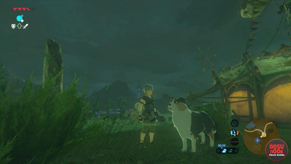 treasure hunting dog zelda botw