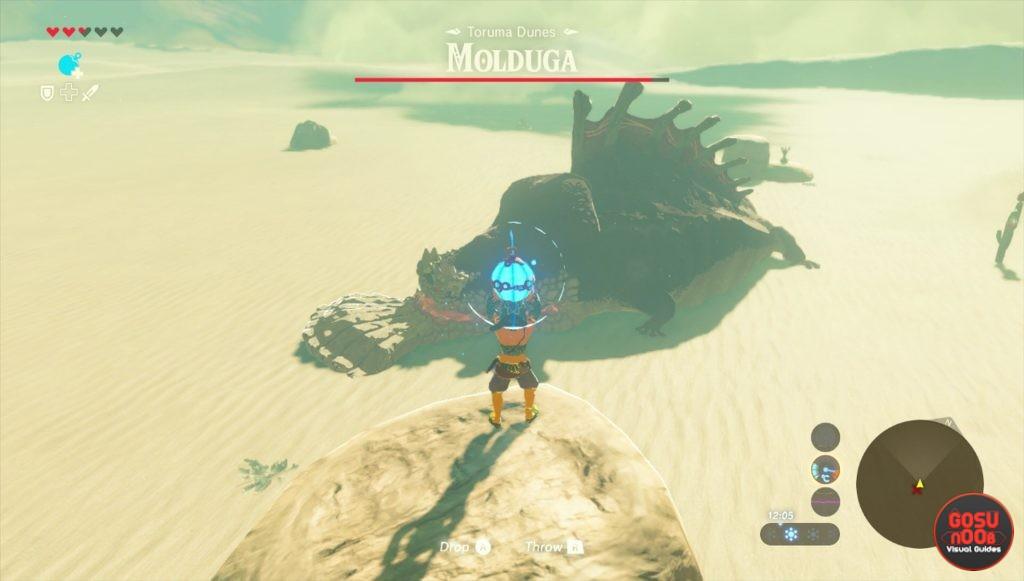 Zelda Botw Mini Boss Locations Talus Stalnox Hinox Lynex