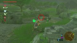 zelda botw tingle's hood location