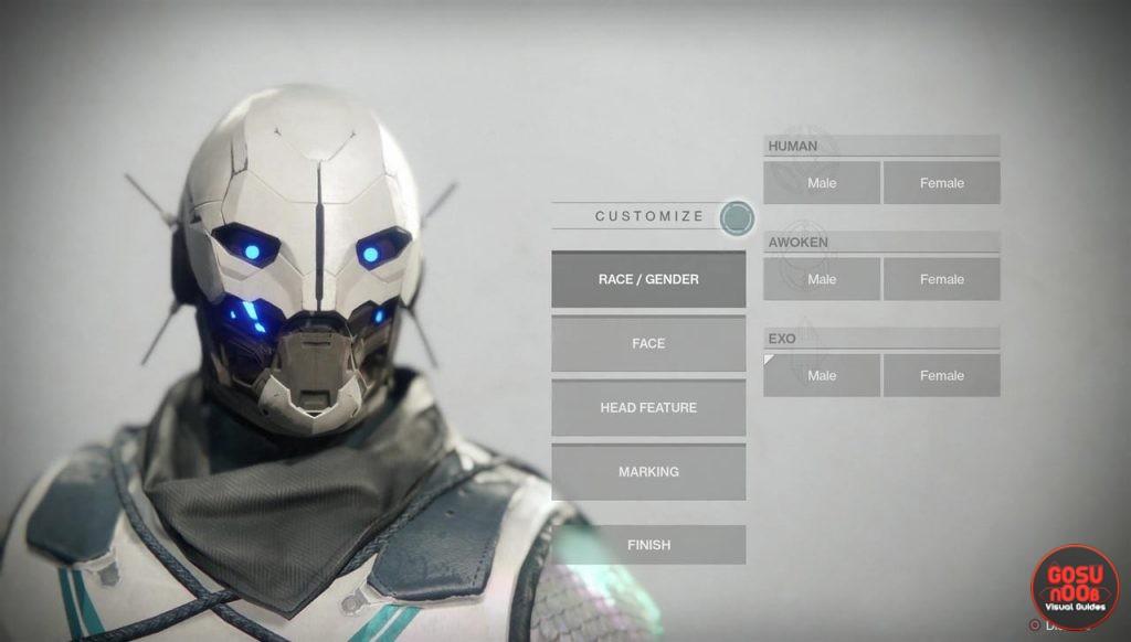 Destiny 2 Character Customization