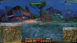 GW2 Trader Berjas Pricklepatch Hollow Springer Treat