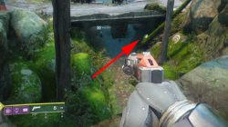 Golden Chest Locations Destiny 2 EDZ Winding Cove