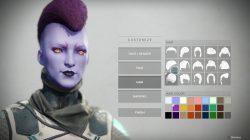 Hair Customization Destiny 2 Guardian Character