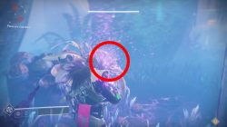 How to Kill Beasts in Pleasure Gardens Leviathan Raid