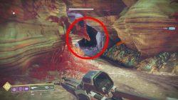 Loot Cave Entrance Destiny 2