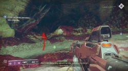 destiny 2 ancient's haunt nessus