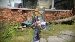 destiny 2 veteran reward emblems