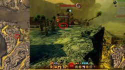 GW2 Awakened Intel Location Bonestrand Jackal Treat