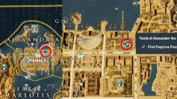 Tomb of Alexander The Great Papyrus Puzzle Location AC Origins