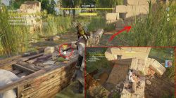 ac origins taste of her sting investigation clues hints