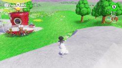 mushroom kingdom warp painting location