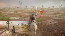 nature's way riddle ac origins